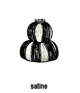 Satine-declercq