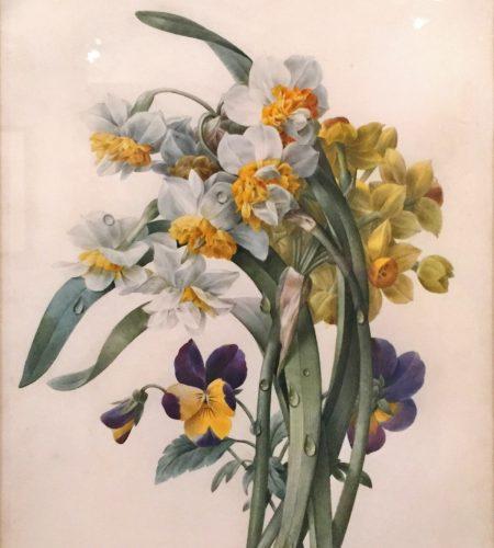 Pierre Joseph Redouté bouquet de fleurs 1816 Aquarelle sur vélin Exposition Redouté